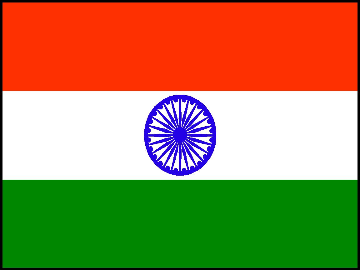 Indain Flag: Stacey Paints India